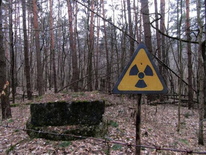 radiazioni ionizzanti gli effetti il rischio linformazione e le norme 2