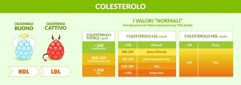 colesterol_800x284